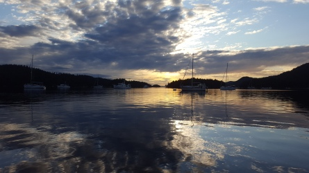 Harbour views - Photo by: Amber Reid